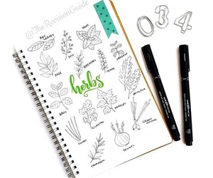 arrows, cactus, and doodle image