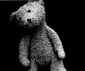 bear, black and white, and black image