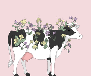 cow, flowers, and pink image