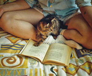 book, cat, and girl image