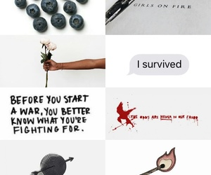 hunger games, katniss everdeen, and libro image