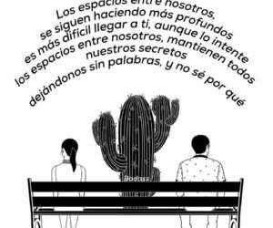 frases, love, and couple image