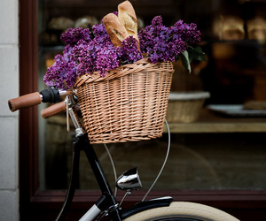 basket, flowers, and violet image