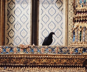idian, bird, and ornate image
