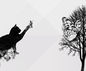 beautiful, tree, and fondo image