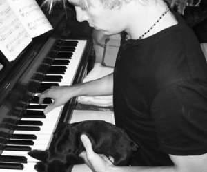 dog, piano, and vader image