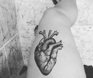 heart, legs, and perna image