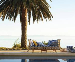 day bed, palm tree, and sea image