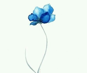 flowers, blue, and watercolor image
