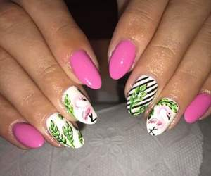 beauty, fashion, and flamingo image