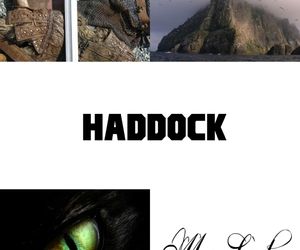toothless, how to train your dragon, and haddock image