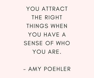 Amy Poehler, words, and quotes image