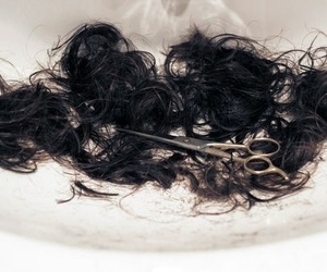 hair and cut image
