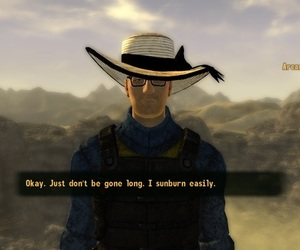 fallout, video games, and fallout new vegas image