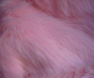 pink, fur, and pastel image