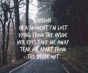 Lyrics, carrion, and parkway drive image