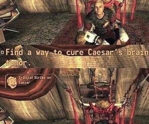 fallout, meme, and fallout new vegas image