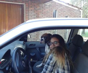 boxer, car, and driving image