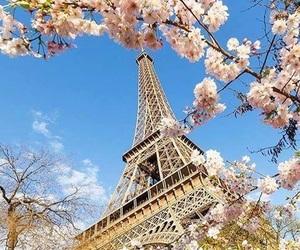 parís and spring image