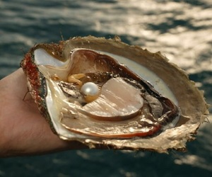 pearl, ocean, and sea image