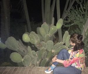 beautiful, bun, and cactus image