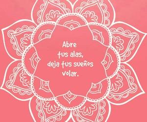frases, mandala, and rosa image