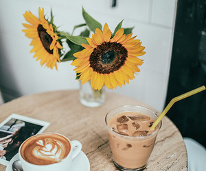 photography, sunflower, and coffee image