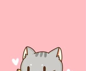 cat, cute, and wallpaper image