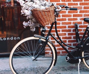 flowers, bike, and london image