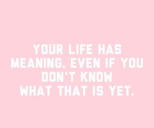 life, pink, and motivation image