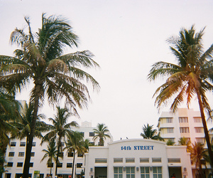 35mm, light leak, and Miami image