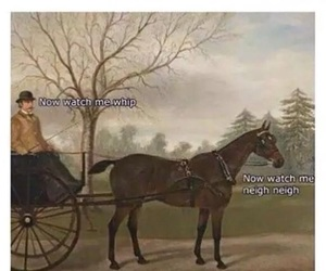 funny, lol, and horse image