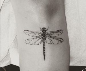 dragonfly and tattoo image