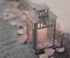 pink, candle, and petals image