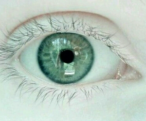 eye, green, and white image