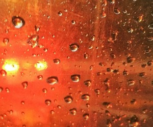 abstract photography, amber, and drops image