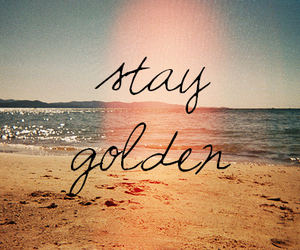 beach, golden, and summer image