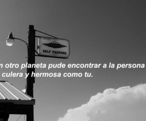 b&w, black, and frases image