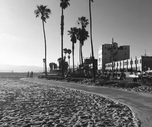 beach, los angeles, and noir et blanc image