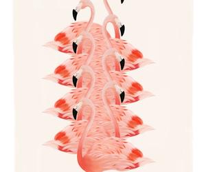 wallpaper, flamingo, and pink image