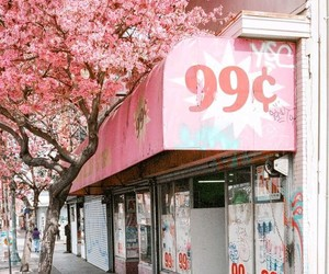 pink, street, and tree image