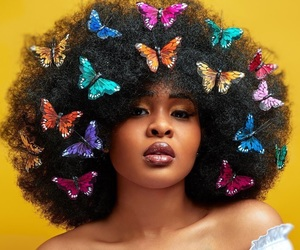 beauty, bold, and butterflies image