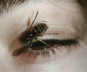 bee and eyes image