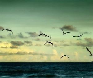 Image by Sunstroke