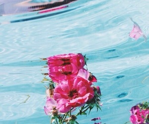 nice, water, and flowers image
