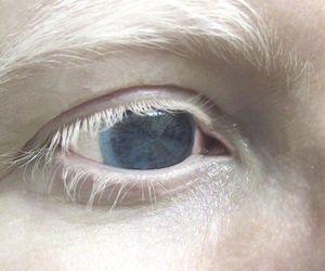eye, white, and eyes image