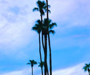 blue, desert, and la image