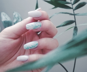 green, plant, and manicure image