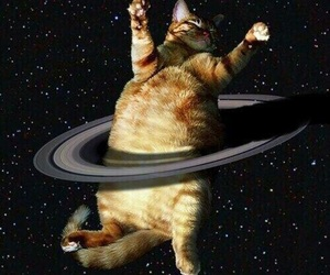 cat, saturn, and space image