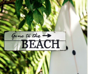 beach, sign, and ocean image